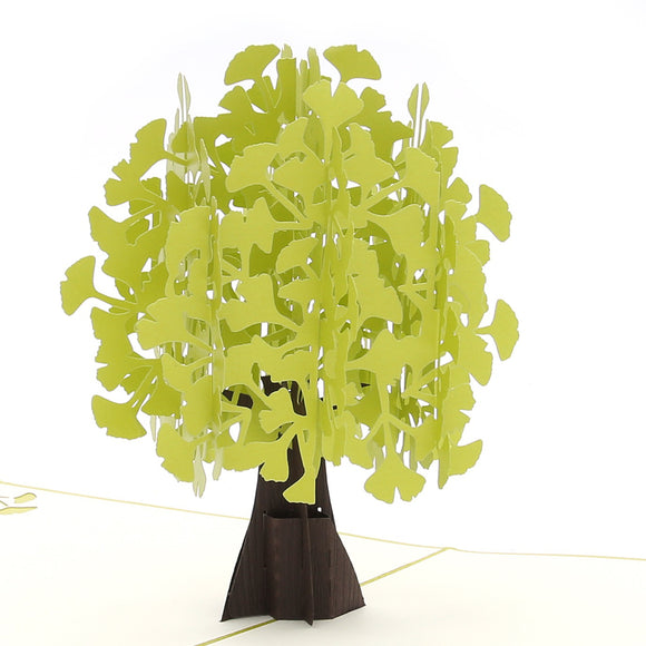Ginkgo Biloba Pop Up Card