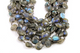 Flashy Blue Labradorite Faceted Bezel, (GMB-LAB-02) - Beadspoint