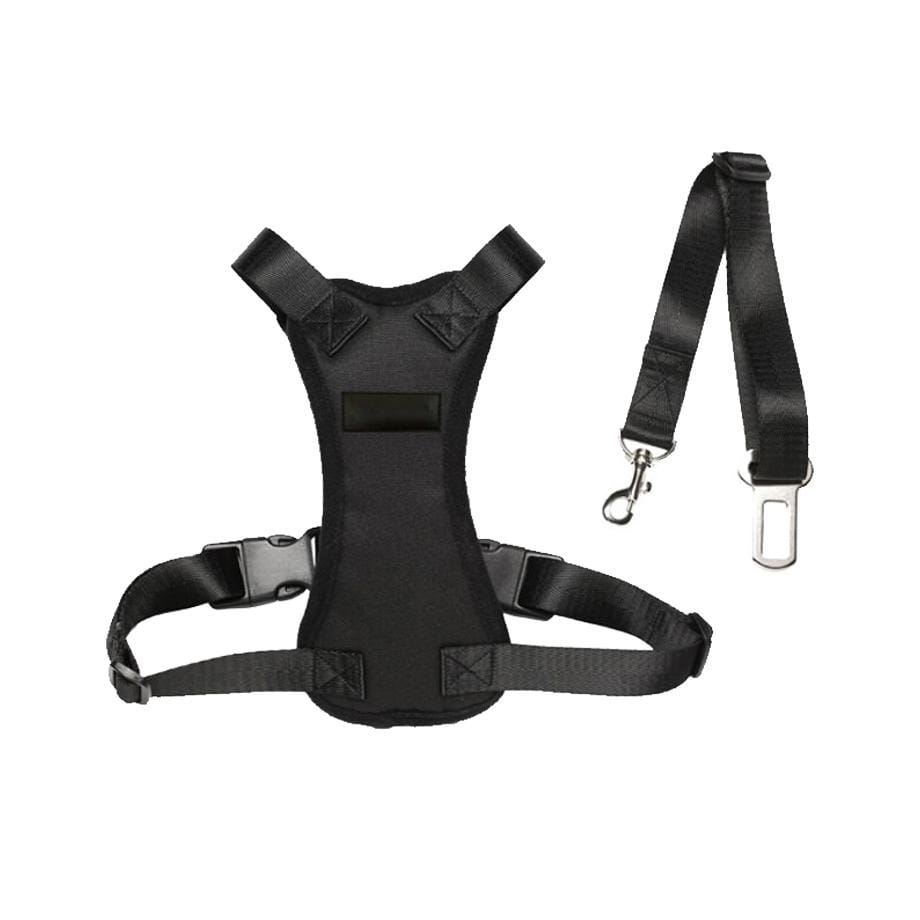 Car Safety Harness
