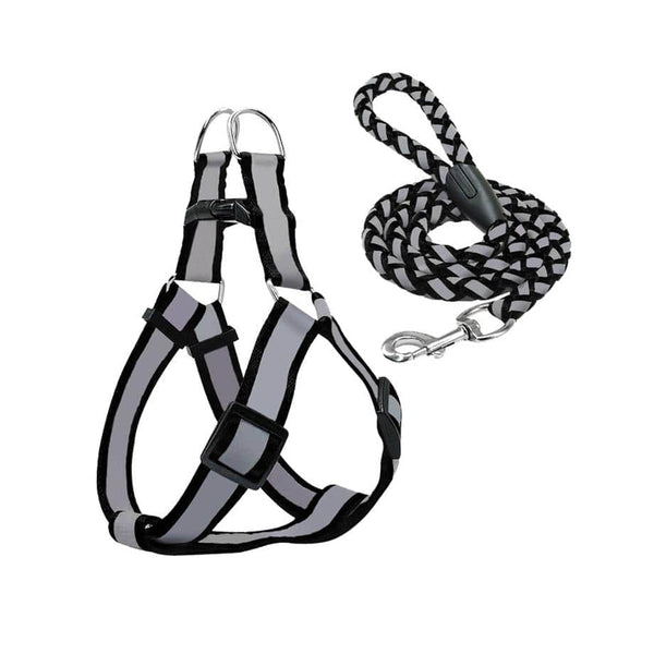 Reflective Harness & Leash Set