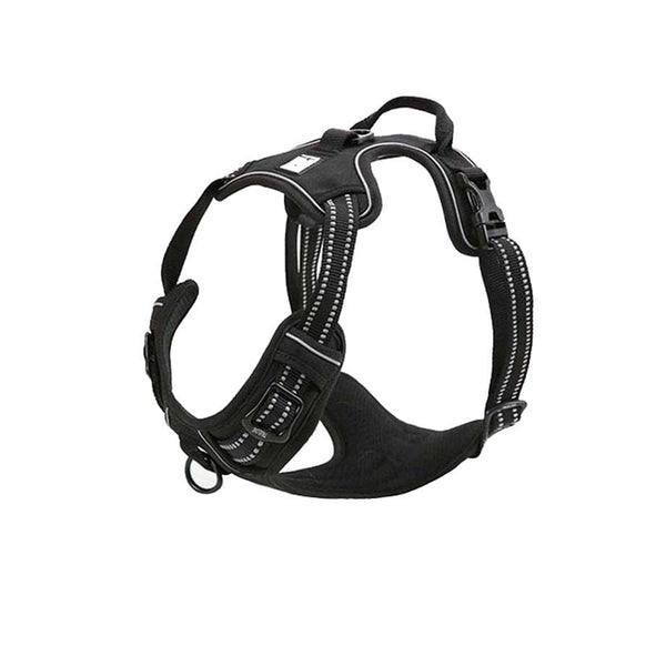 Milo Harness 2.0 (No Pull)
