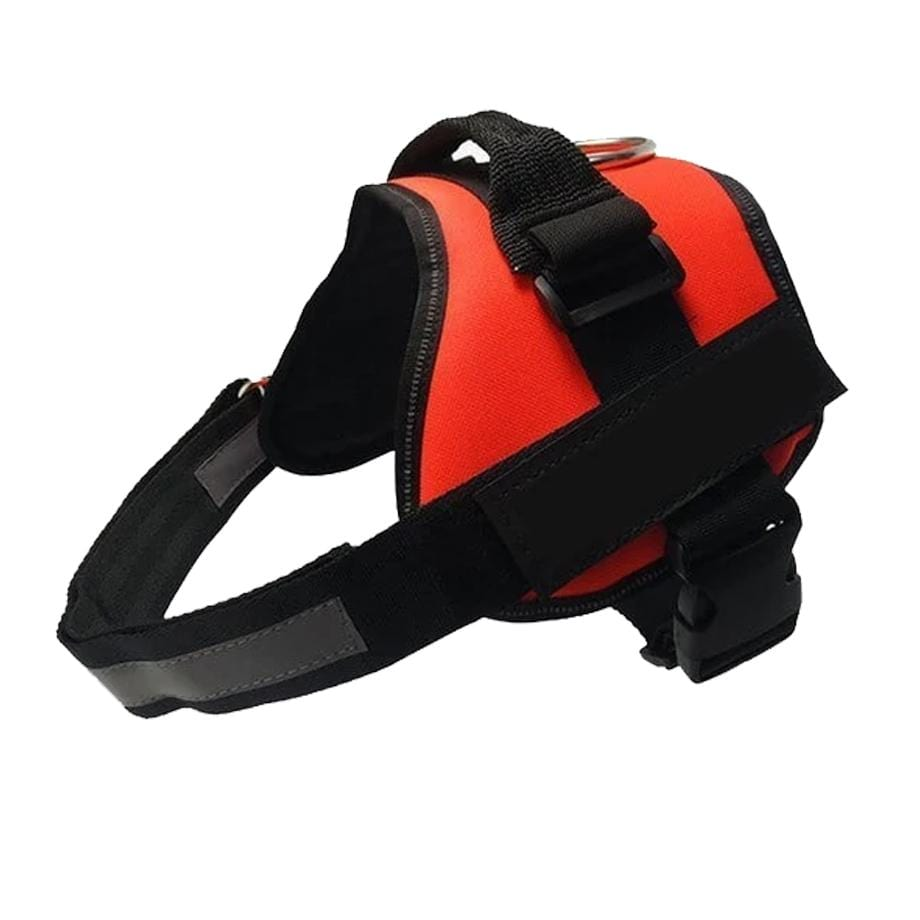 All-In-One Harness