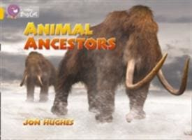 Animal Ancestors Workbook - HarperCollins Publishers 9780007474400