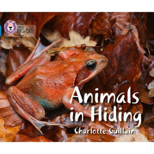 Animals in Hiding: Band 04/Blue - HarperCollins Publishers 9780007512850