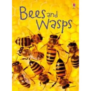 Bees and Wasps - Usborne Books 9781409544876