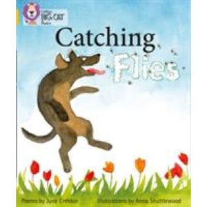 Catching Flies: Band 09/Gold - HarperCollins Publishers 9780007461813