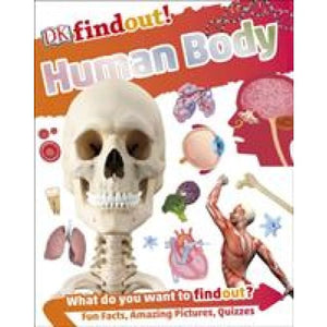 DKfindout! Human Body - Dorling Kindersley 9780241285077