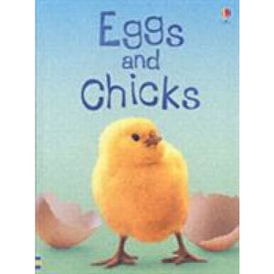 Eggs and Chicks - Usborne Books 9780746074527