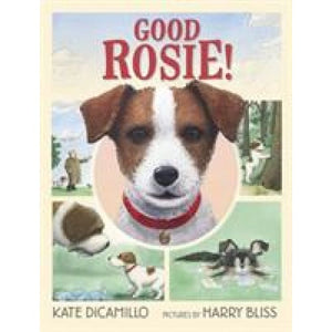 Good Rosie! - Walker Books 9781406383577