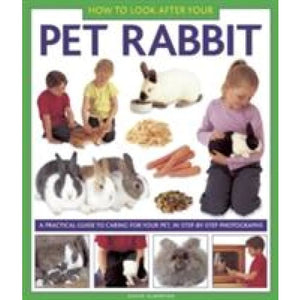 How to Look After Your Pet Rabbit - Anness Publishing 9781843228349