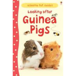 Looking After Guinea Pigs - Usborne Books 9781409561880