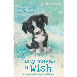 Lucy Makes a Wish - Oxford University Press 9780192772480