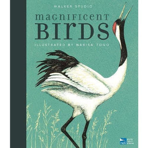 Magnificent Birds - Walker Books 9781406377880