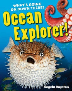 Ocean Explorer!: Age 5-6 below average readers - Bloomsbury Publishing 9781408133750