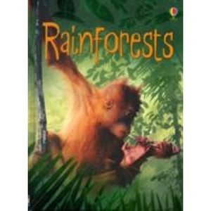 Rainforests - Usborne Books