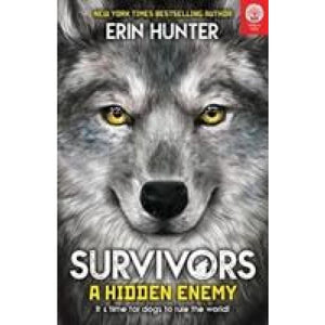Survivors Book 2: A Hidden Enemy - Imagine That Publishing 9781787004498
