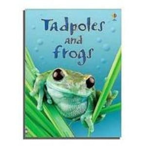 Tadpoles and Frogs - Usborne Books