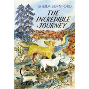 The Incredible Journey - Vintage Publishing 9780099582786