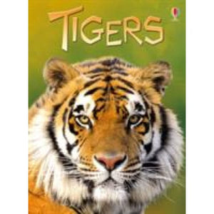 Tigers - Usborne Books