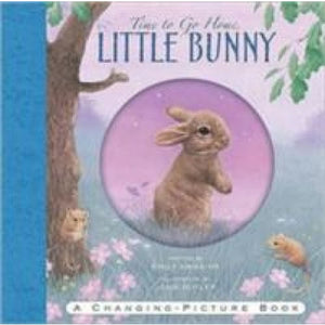 Time to Go Home Little Bunny - Templar Publishing 9781840117547
