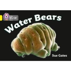 Water Bears: Band 03/Yellow - HarperCollins Publishers 9780007329236