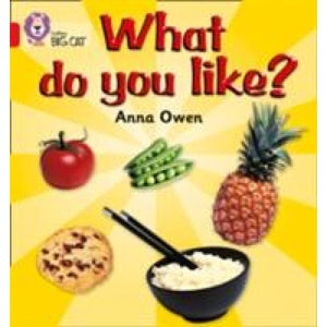 What Do You Like?: Band 02b/Red B - HarperCollins Publishers 9780007185641