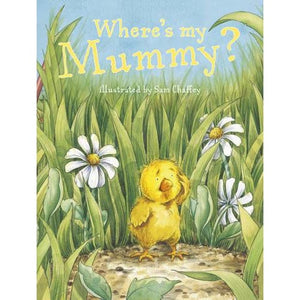 Where's My Mummy - Templar Publishing 9781848778948