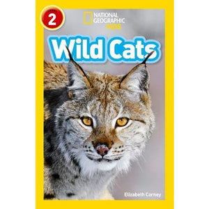 Wild Cats: Level 2 - HarperCollins Publishers 9780008266585