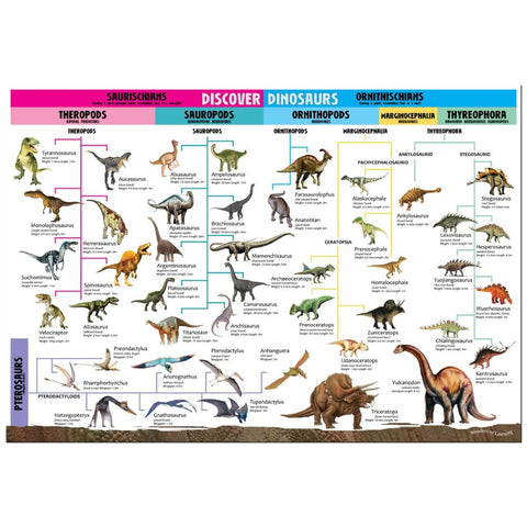 Image of Wonders of Learning: Discover Dinosaurs - North Parade 9781783735198