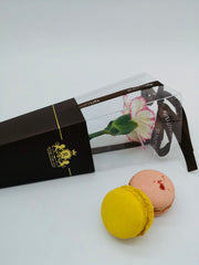 Blooming Carnation with Macarons