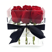 Crystal Clear Box - Red Scarlett