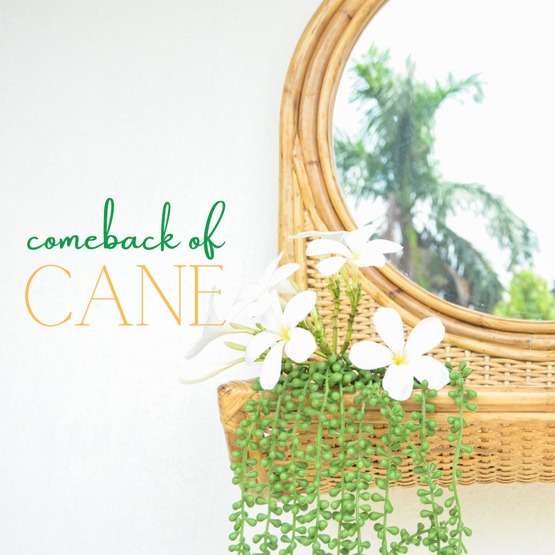 Comeback of Cane in Home Interiors