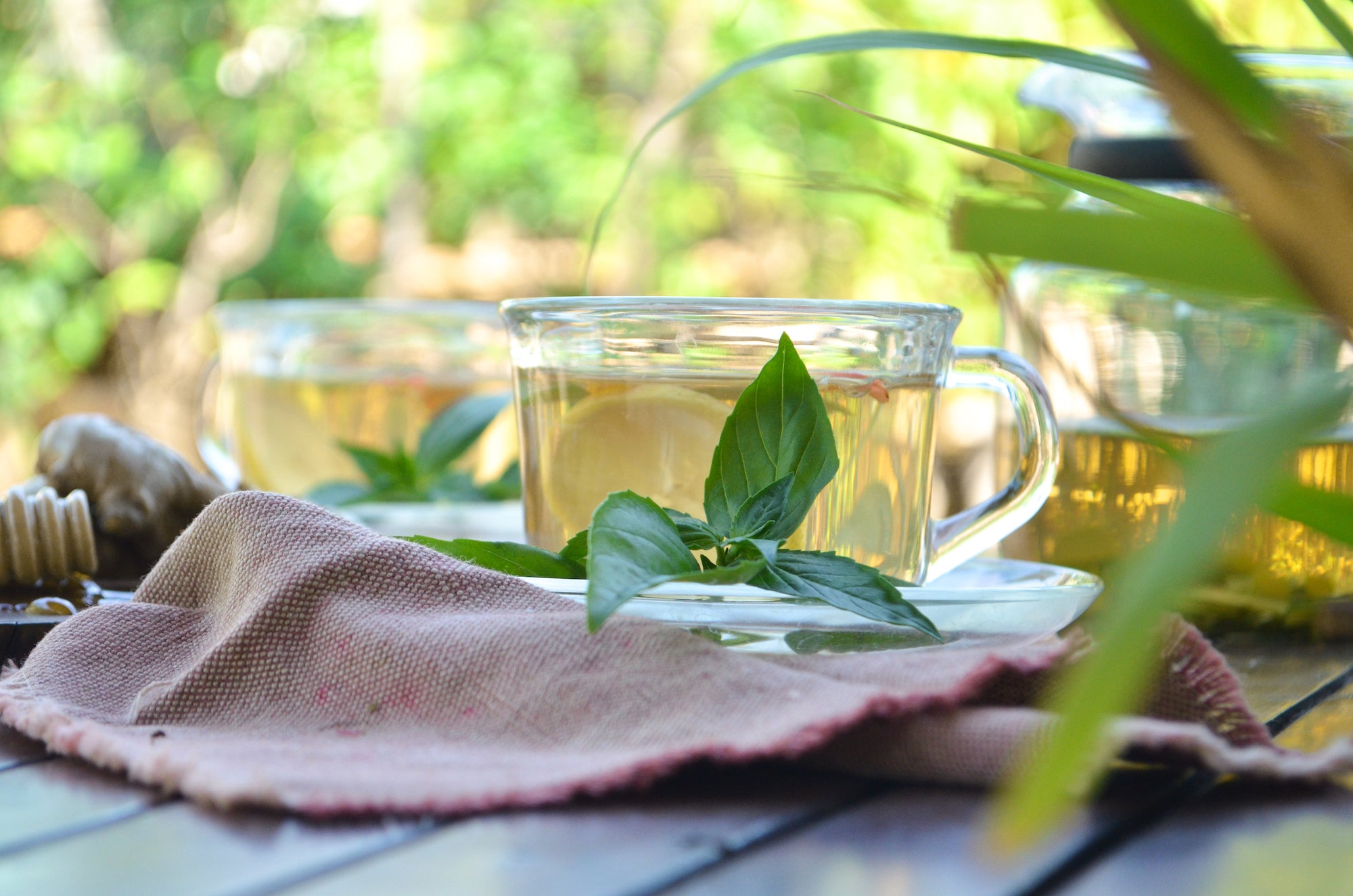 herbal tea with lemongrass, basil ginger