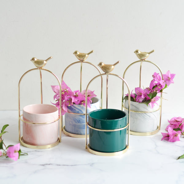 planter gifts for diwali