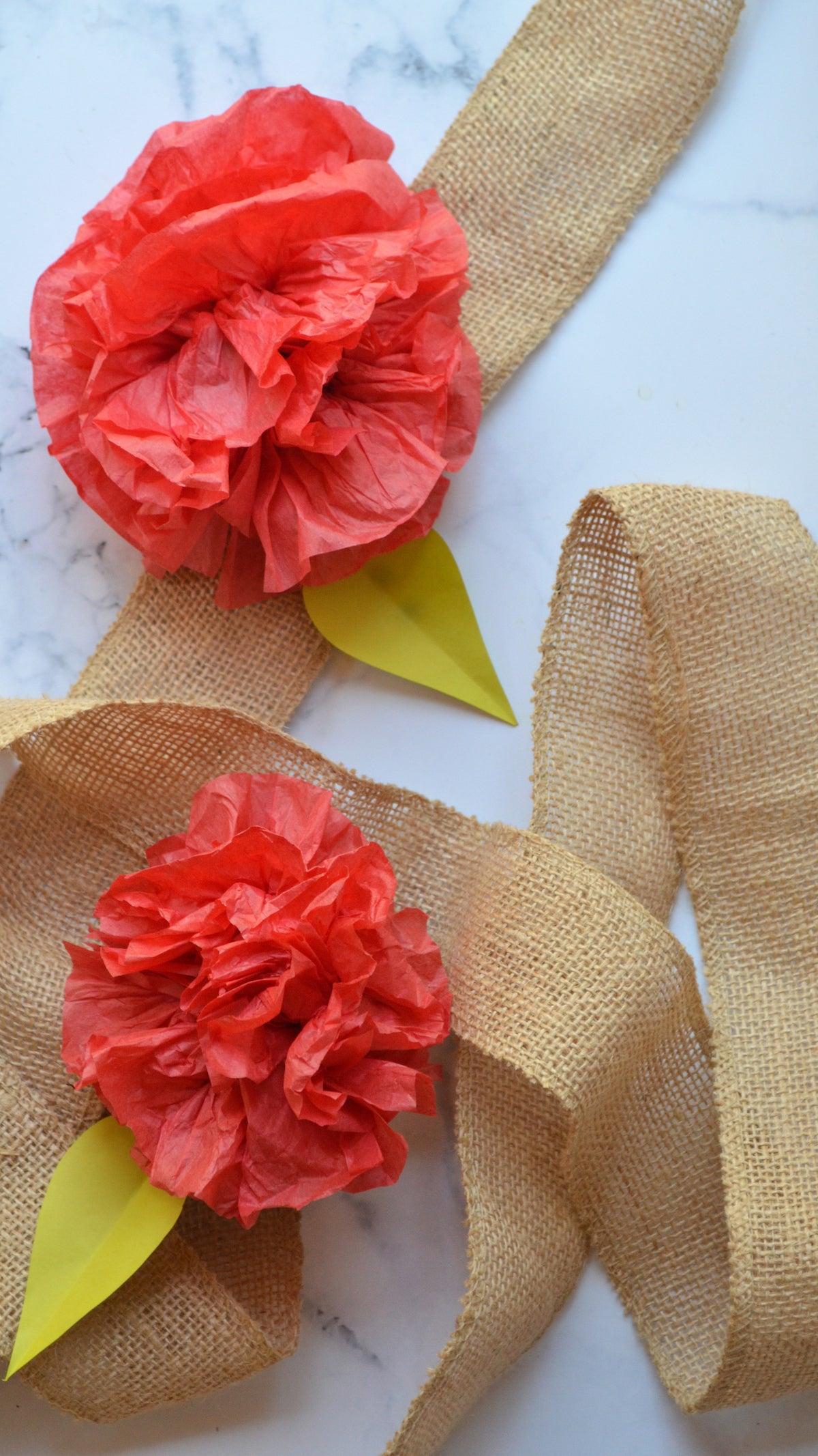 Tissue flowers DIY