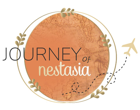 journey of nestasia airplane wreath blog cover image