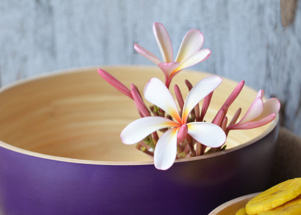 Round Bamboo Ombre Bowl-Purple (Set Of 2)