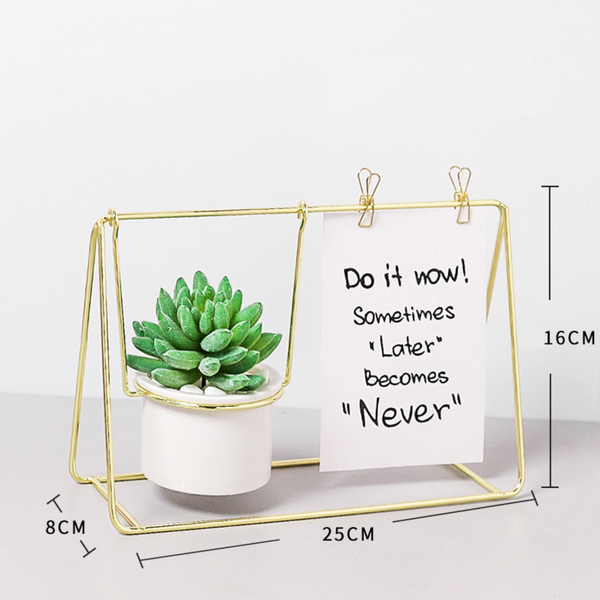 Gold Frame Planter with Plant