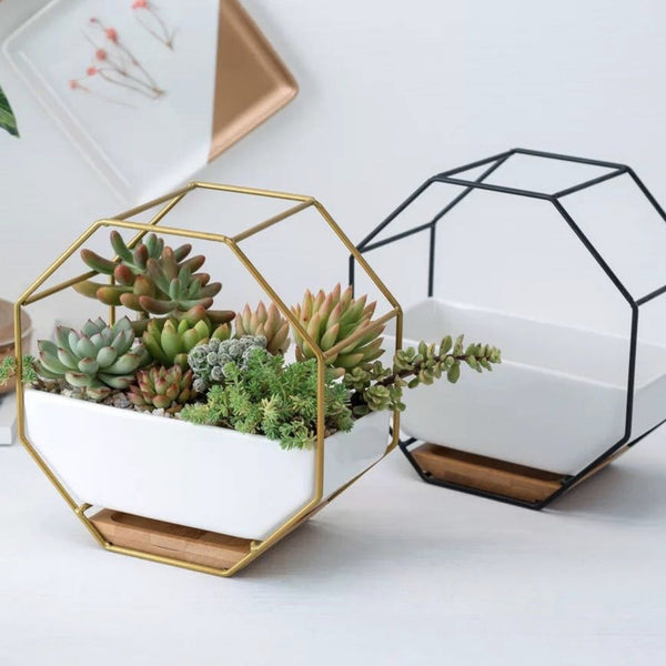 Gold Hexagon Planter