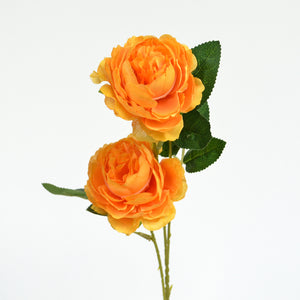 Orange Rose Stem