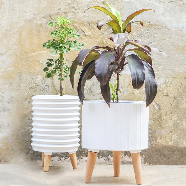 Planter with Legs