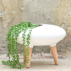 White Pebble Planter
