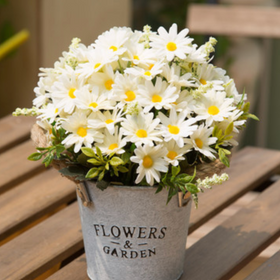 White Flowers in Basket