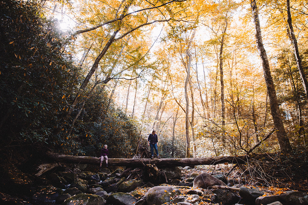 10 reasons to go hiking in the fall
