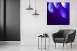 """Into the Blue II"" by Ad van den Boom, Photoprint on Dibond Behind Perspex"