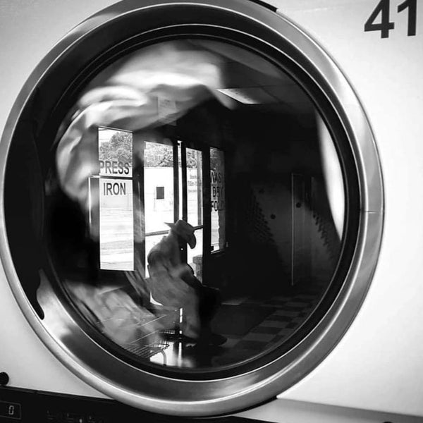 """Laundry #41"" by Jason Whitehead, Framed Giclee Print"