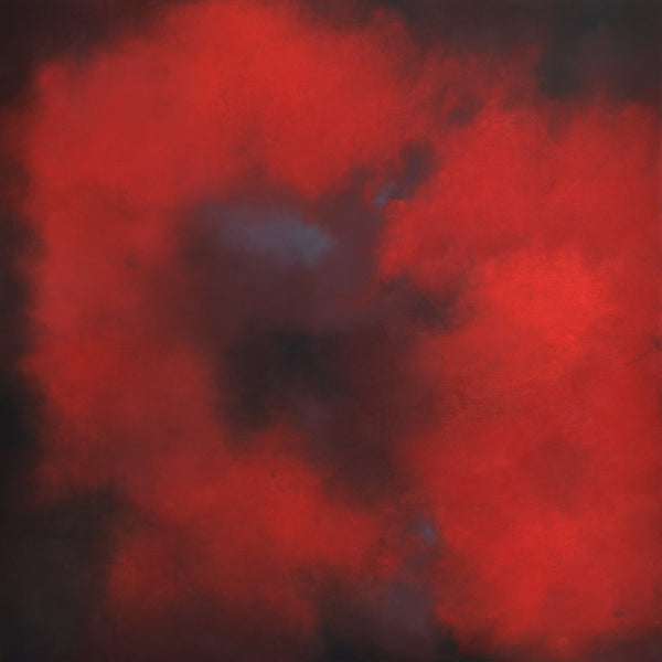 """Red Blossom"" by Kerstin Paillard, Pigments on linen"