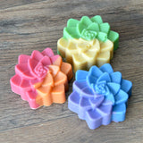 Rainbow Succulent Soap Set - 3 soaps