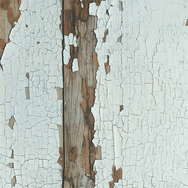 519. 'Flaky' old painted wood, A1 vinyl photography background