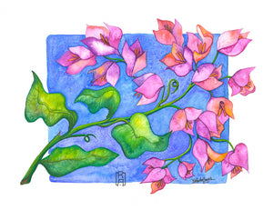Bougainvillea | Mixed Media Painting by Denise Marta-Burch